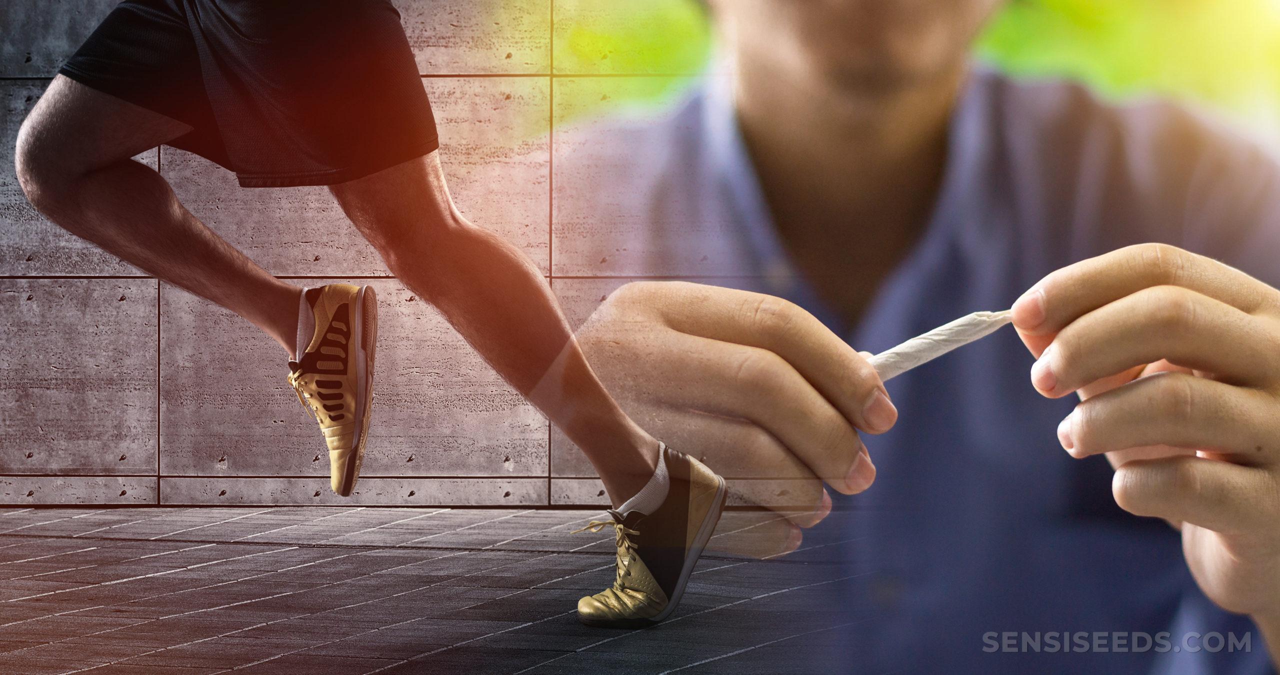 Cannabis y Deporte: ¿Dopaje o No? - Sensi Seeds