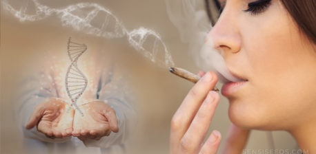 A woman smoking a joint and two hands holding a DNA structure