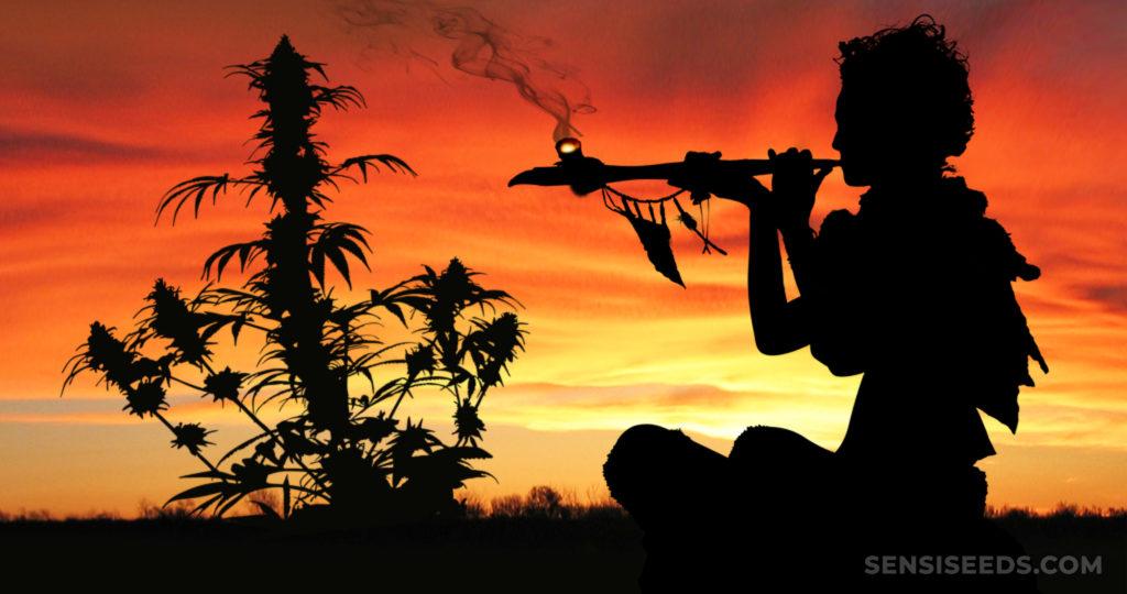 La silhouette d'une personne fumant une pipe et une plante de cannabis contre un coucher de soleil orange