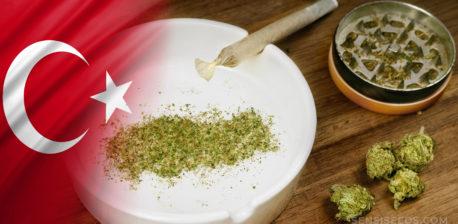 Die türkische Flagge und Cannabis-Knospen und ein Gelenk auf einem Tisch
