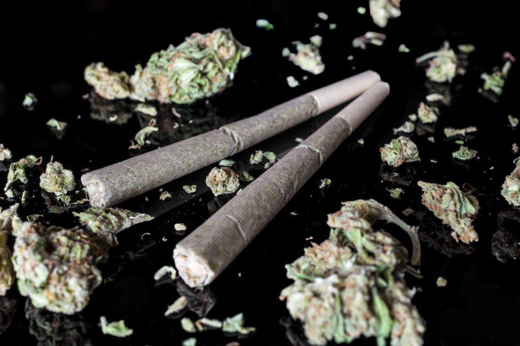 Twee gewalste gewrichten omgeven door cannabisknoppen