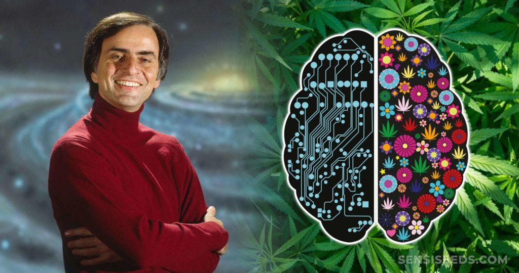 Carl Sagan en de omtrek van een hersenen splitsen in twee helften