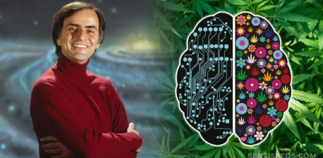Carl Sagan and the outline of a brain split into two halves