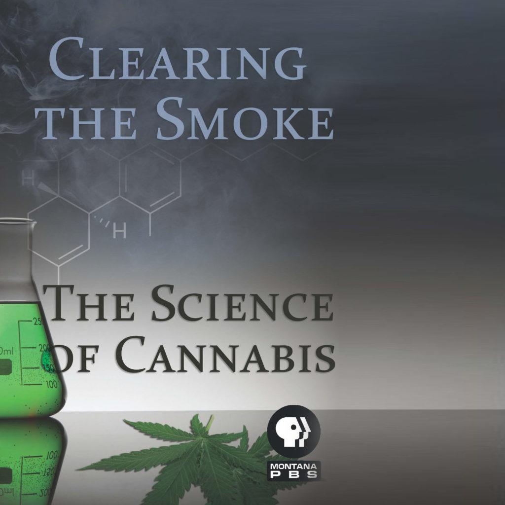 Een reageerbuis vol met groene rokende vloeistof tegen een grijze achtergrond en twee cannabisbladeren