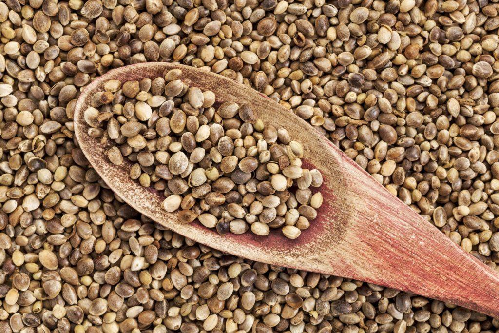 Конопляное семя рецепты признаки воздействия конопли