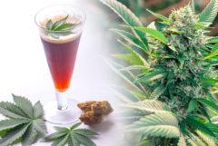 Een glas cannabisbier en een cannabisplant