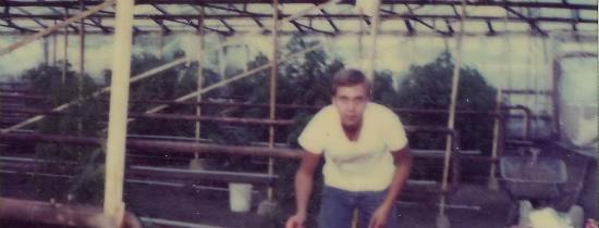 Eine alte Fotografie von Ben-Dronkers, die sich in seinem Gewächshaus beugen