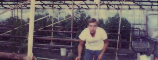 An old photograph of Ben Dronkers bending over in his greenhouse