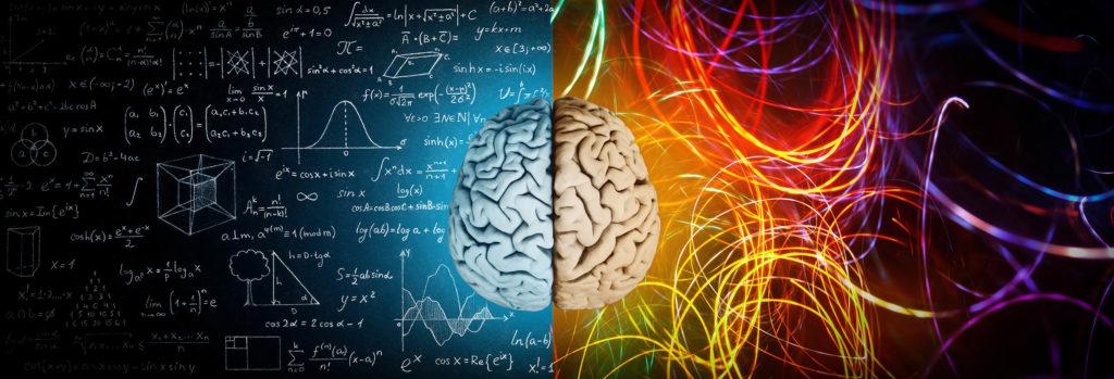 De hersenen splitsen in de helft met één kant die logisch en de andere creativiteit toont
