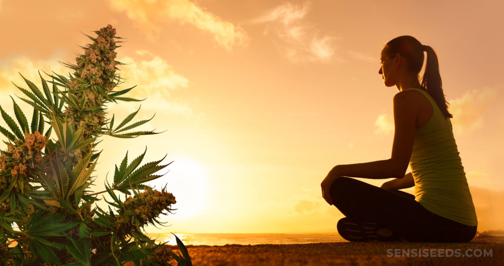 Een vrouw zat uit op de oceaan met een cannabisplant in de hoek