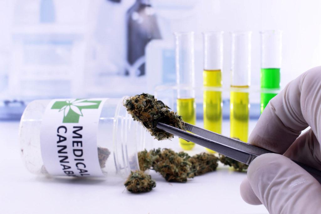 Une personne utilisant des pincettes pour choisir un bourgeon à partir d'un pot étiqueté «cannabis médical»