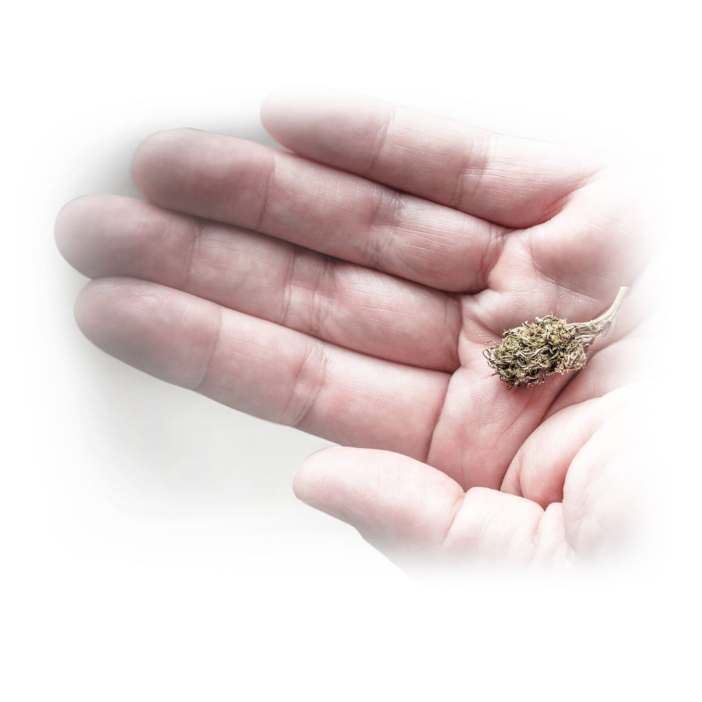 Een kleine knop van cannabis in de palm van een hand