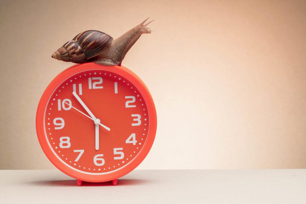 Un escargot sur une horloge rouge avec des nombres blancs
