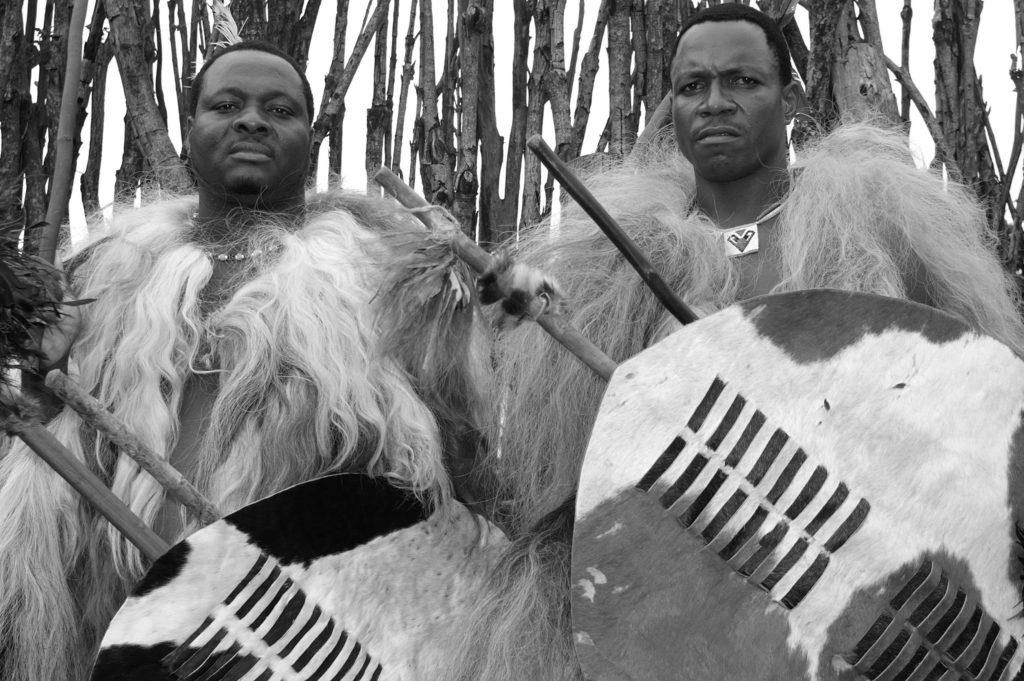 Deux guerriers zoulous portant de la fourrure et des boucliers