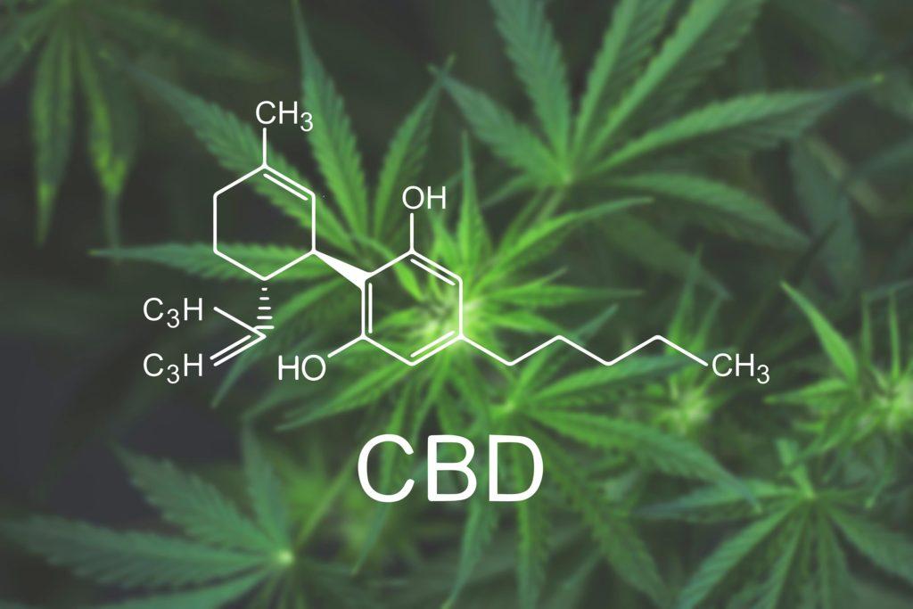 Die chemische Formel von CBD und ein Cannabis-Werk