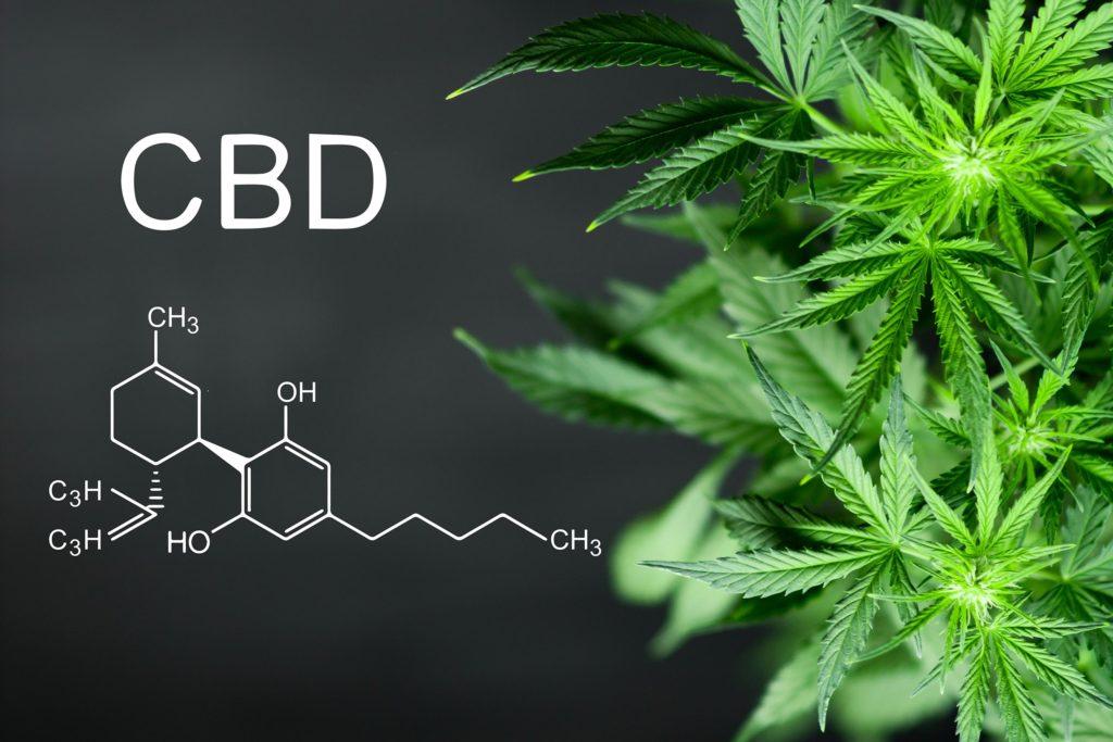 Die chemische Formel für CBD- und Cannabis-Anlage