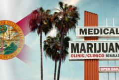 La bandera floridiana, las palmeras y un letrero para 'MEDICAL marihuana'