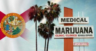 """Die floridische Flagge, Palmen und ein Zeichen für """"medizinische Marihuana"""""""