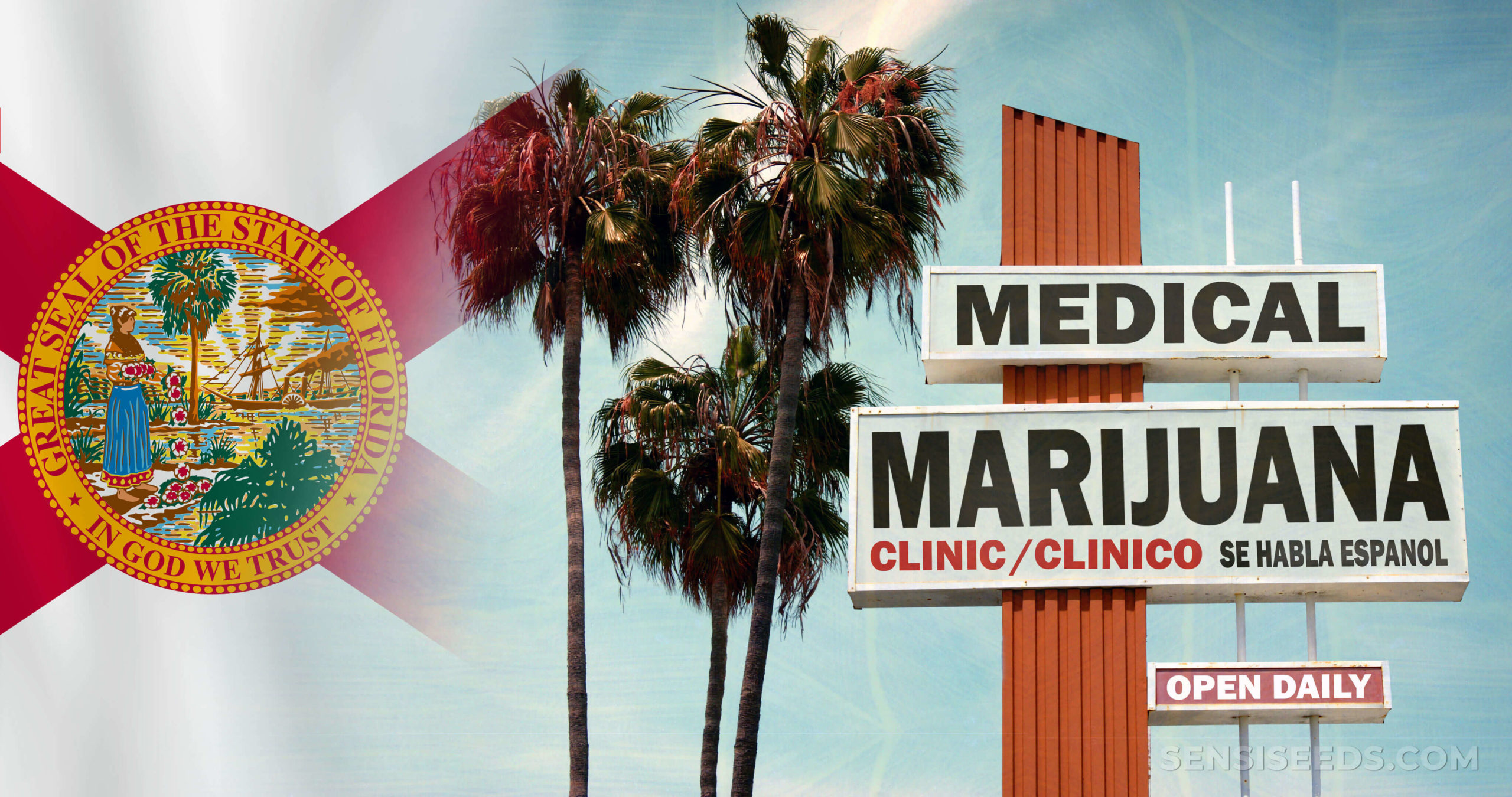 The Floridian flag, palm trees, and a sign for 'medical marijuana'