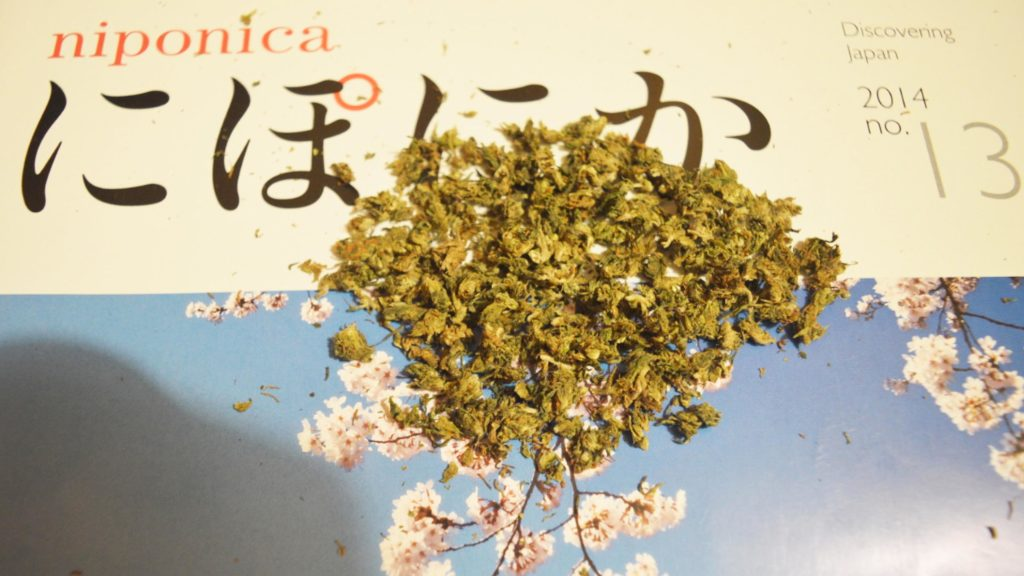 A scattering of cannabis buds