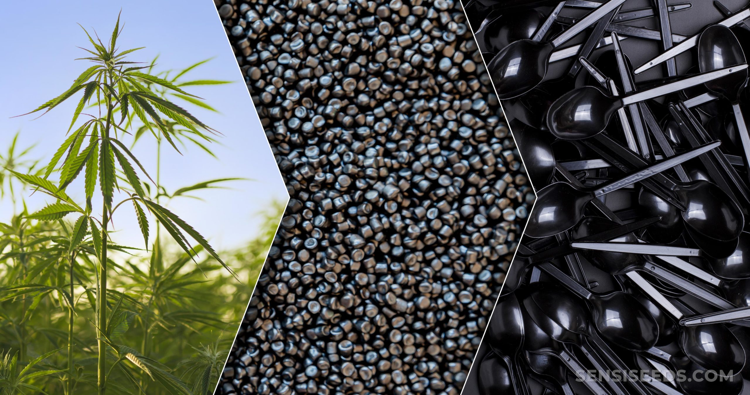 Hemp Plastic: What Is It and How is it Made? - Sensi Seeds