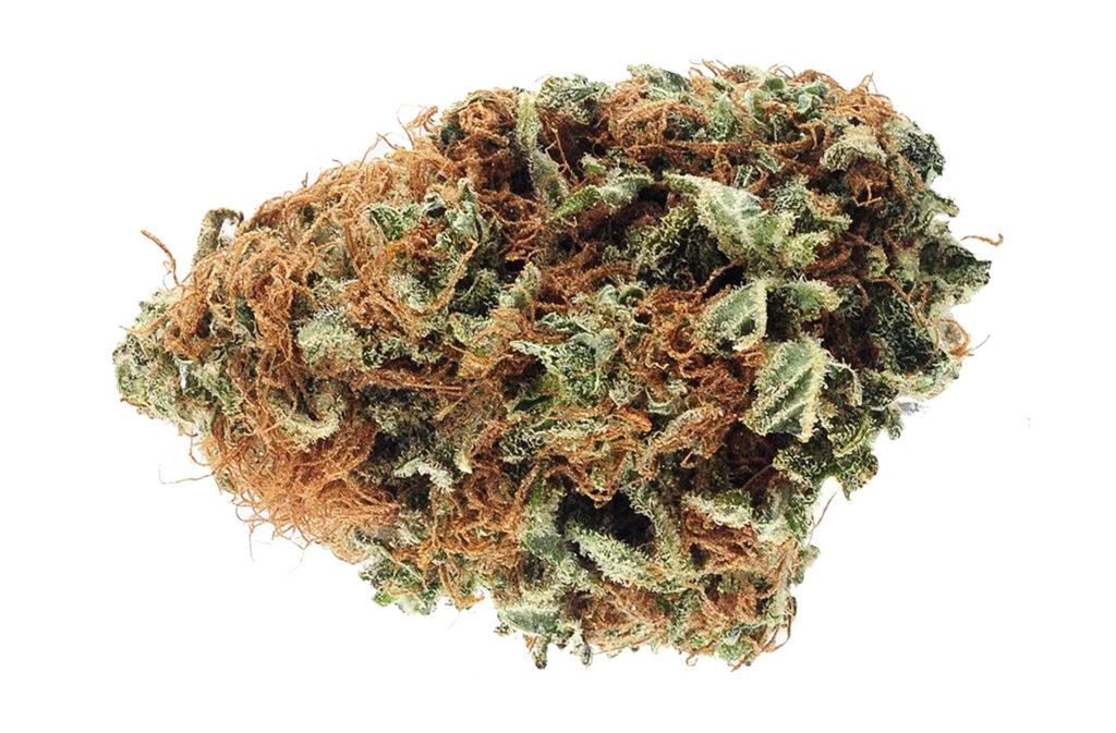 Eine Cannabisknospee.
