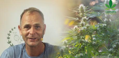 Alan Dronkers con un micrófono al lado de una planta de cannabis