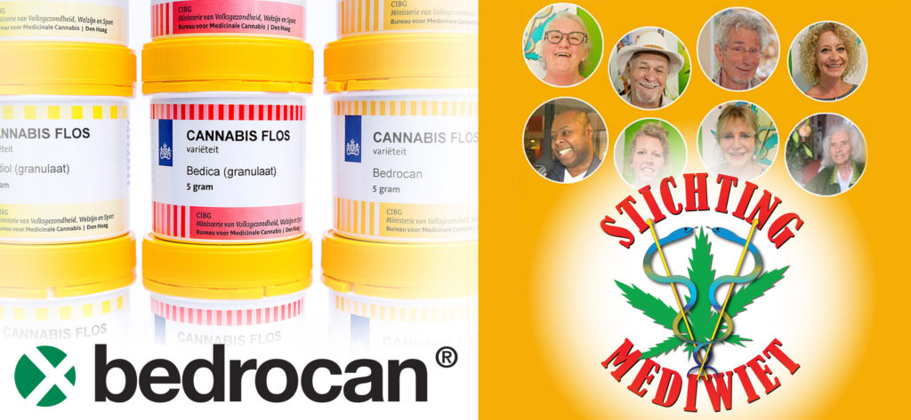 Pots of Dutch Bedrocan medicinal cannabis; members of the Dutch medicinal cannabis association Stichting Mediwiet