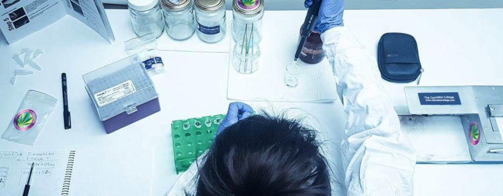 Una persona que prueba el cannabis en un laboratorio.