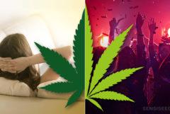 Una hoja de cannabis y las personas de fiesta y una mujer relajándose en el sofá.