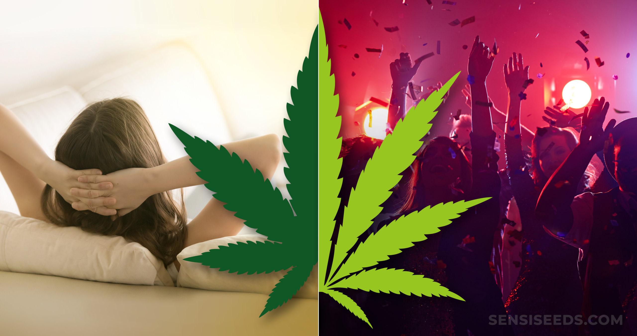 Ein Cannabis-Blatt und die Leute, die feiern und eine Frau, die auf Couch sich entspannt