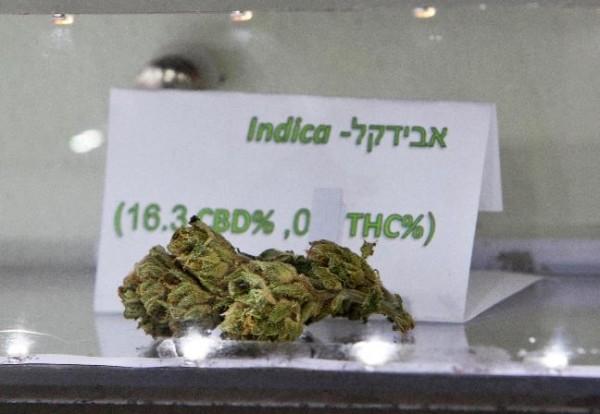 Cannabis Soziale Phobie