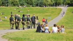 Cannabis vom Coffeeshop um die Ecke bald auch in Deutschland? - Sensi Seeds blog