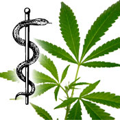 cannabis_medizin