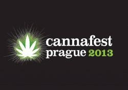 image cannafest 2013