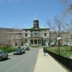 McGill Universität: Anzahl der Toten durch schmerzstillende Medikamente höher als durch Kokain und Heroin zusammen.