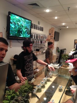 Cannabis Dispensary River Rock in Colorado.