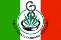 Italian_government