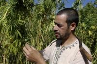 Morocco Rethinking Pot Going Legal