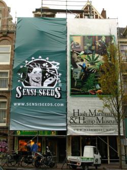 Hash Marihuana & Hemp Museum, Amsterdam 2012