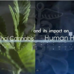 Medical Cannabis and Its Impact on Human Health