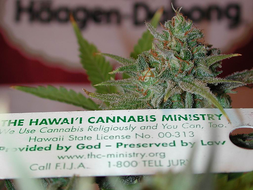 Cannabis has been used as a sacrament by many religious groups, ancient and modern