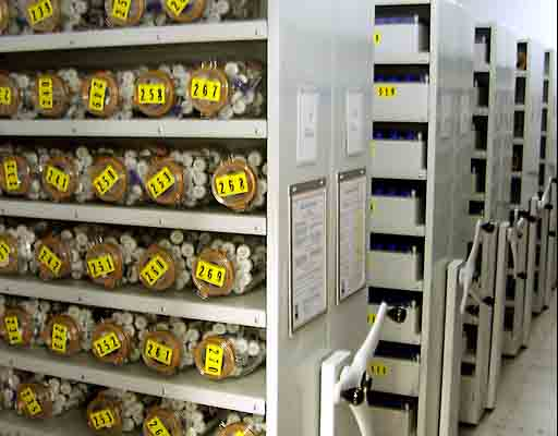The importance of maintaining seed banks