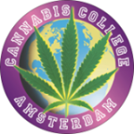 The History of Decriminalizing Cannabis in Holland