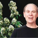 Ed Rosenthal Super Bud Review
