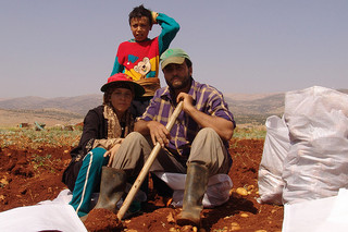 Farmers in the Bekaa Valley have been encouraged to grow other crops, such as potatoes