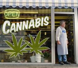 A cannabis dispensary in Colorado.