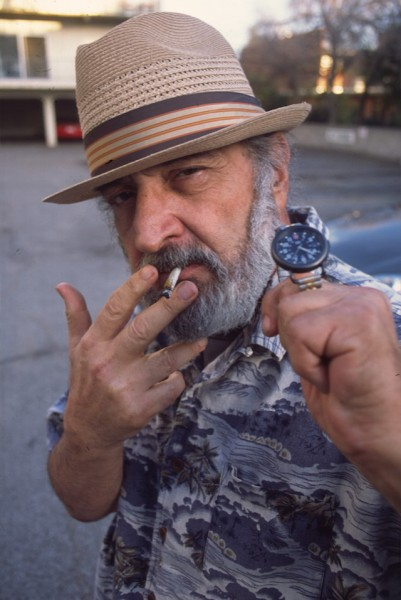 20 Years of Jack Herer Cannabis Indica Plant