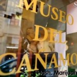 WeedMapsTV visits Spannabis and the Hash Marihuana & Hemp Museum in Barcelona