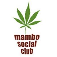 Mambo Social Club Logo
